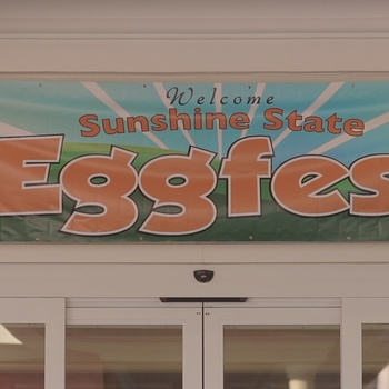 Welcome to Eggfest 2016